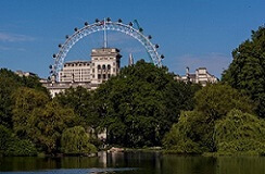 London Eye - view from Hyde Park while studying English in London on intensive language programme