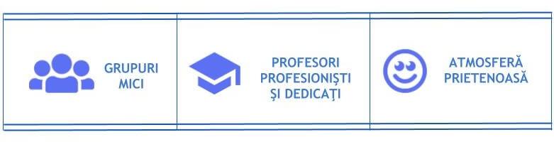 Grupuri mici, Profesori profesionişti şi dedicaţi, Atmosferă prietenoasă