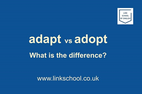 Adapt vs adopt. What is the difference?